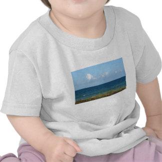 Vare la duna con agua azul y el cielo, la Florida Camiseta