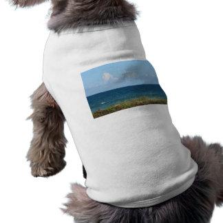 Vare la duna con agua azul y el cielo, la Florida Camiseta De Perrito