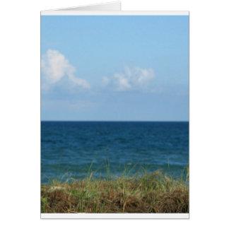 Vare la duna con agua azul y el cielo, la Florida Tarjetón