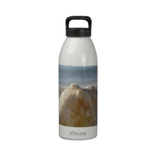 Vare un agua clara Shell Botella De Beber