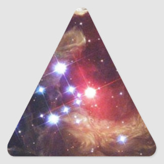 variable_stars_large.jpg triangle sticker