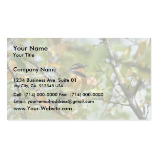 Varied thrasher business card