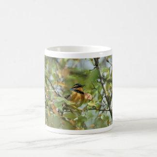Varied thrasher coffee mug
