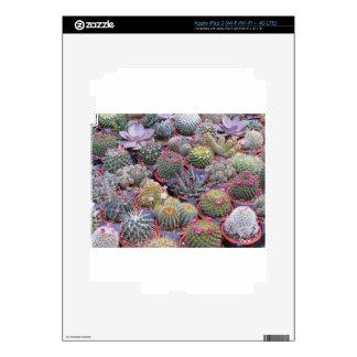 Variedad de pequeño fondo del cactus iPad 3 pegatina skin