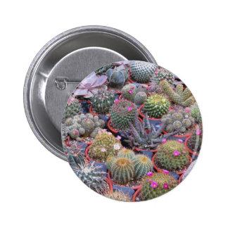 Variedad de pequeño fondo del cactus pin redondo de 2 pulgadas