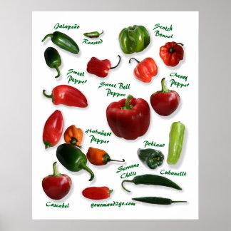 Variedades de la pimienta de chile poster