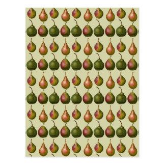 Variedades de peras tarjetas postales