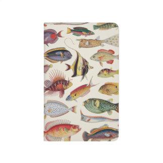 Variedades de pescados cuadernos