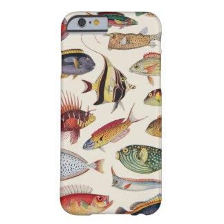 Variedades de pescados funda barely there iPhone 6