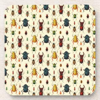 Variedades del escarabajo posavasos