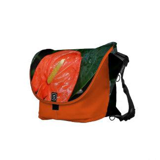Variegated Chinese Lantern Messenger Bag