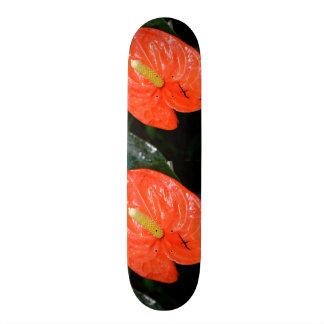 Variegated Chinese Lantern Skateboard