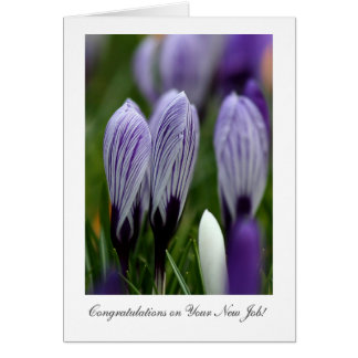 Variegated Crocuses - Congrats on Your New Job Card