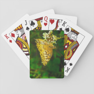Variegated Fritillary Butterfly Photo Card Deck