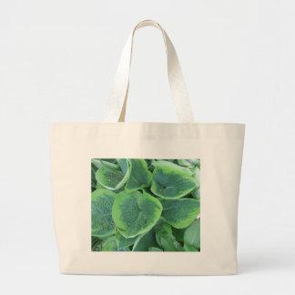 Variegated Hosta Light Green Dark Green Leaves Jumbo Tote Bag