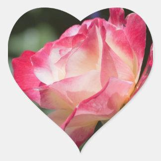 Variegated Rose Floral Gift Heart Sticker