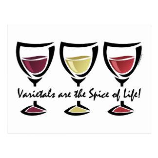 Varietals Wine Postcard