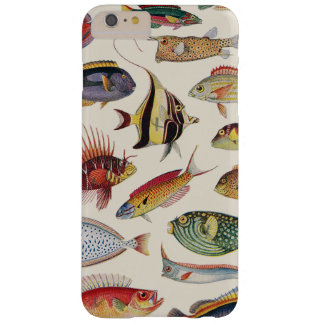 Varieties of Fish Barely There iPhone 6 Plus Case