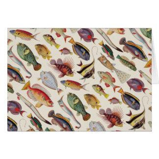 Varieties of Fish Card