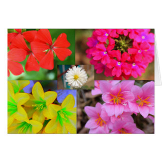 variety of Flowers Card
