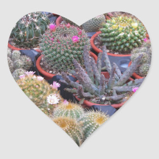 Variety of small cactus background heart sticker