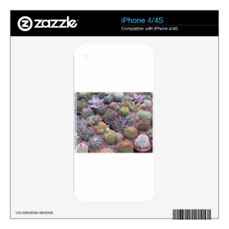 Variety of small cactus background iPhone 4S decals