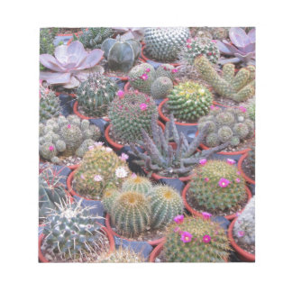 Variety of small cactus background notepad