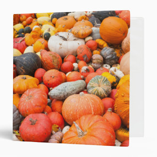 Variety of squash for sale, Germany 3 Ring Binder