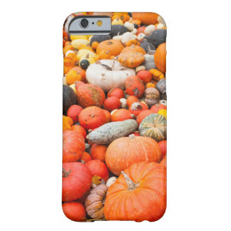 Variety of squash for sale, Germany Barely There iPhone 6 Case
