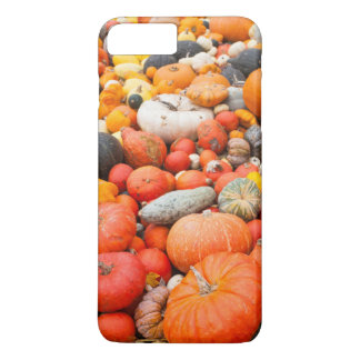 Variety of squash for sale, Germany iPhone 8 Plus/7 Plus Case