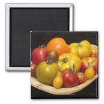 Variety of tomatoes 2 inch square magnet