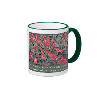 Varigated Pink and White with Aurelius Quote Ringer Mug