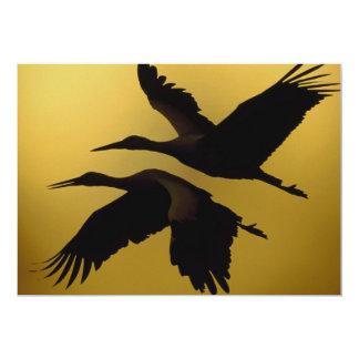 Various Birds Card