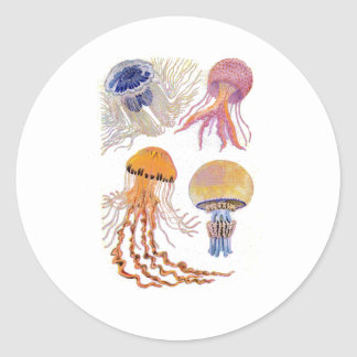 Various Jelly Fish Classic Round Sticker