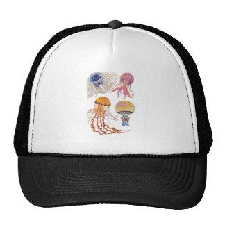 Various Jelly Fish Trucker Hat