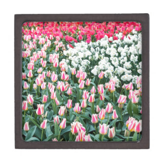 Various red tulips and white daffodils keepsake box