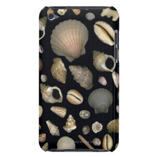 Various sea shells barely there iPod cover