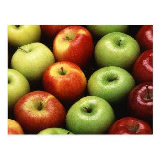 Various Types of Apples Postcard