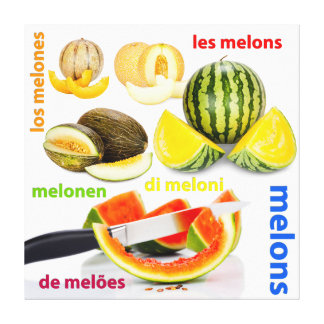 Various types of melons stretched canvas print