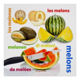 Various types of melons print