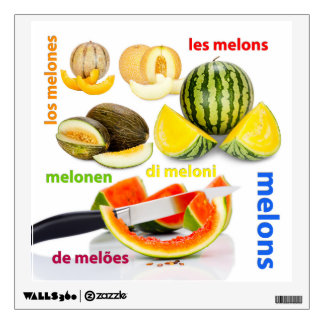 Various types of melons wall graphics