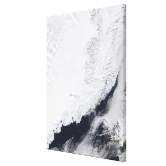 Various types of sea ice canvas print