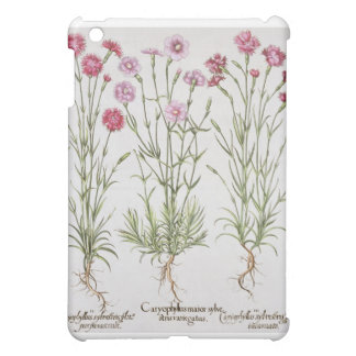 Various varieties of Dianthus, from the 'Hortus Ey iPad Mini Case