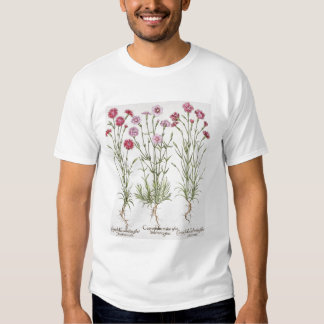 Various varieties of Dianthus, from the 'Hortus Ey Tee Shirt