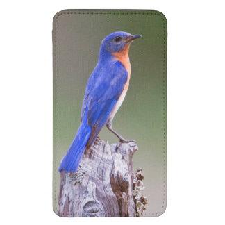 Varón adulto del este del Bluebird (Sialis del Funda Acolchada Para Galaxy S5