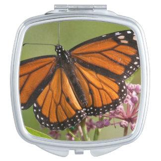 Varón de la mariposa de monarca en Milkweed de Espejo Maquillaje