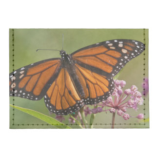 Varón de la mariposa de monarca en Milkweed de Tarjeteros Tyvek®