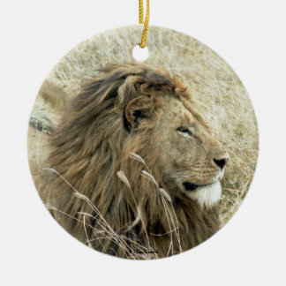 Varón del león adorno redondo de cerámica
