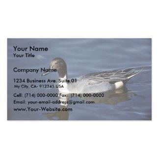 Varón del pato del pato rojizo septentrional tarjetas de visita