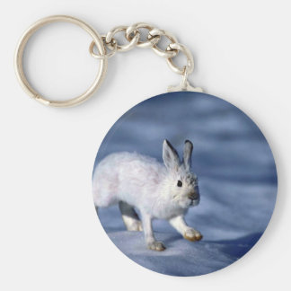 Varying Hare Snowshoe Rabbit on open snow Keychains